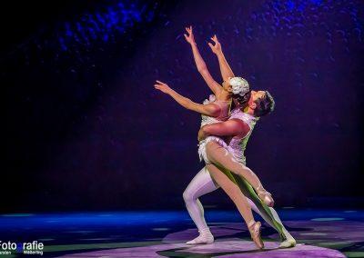 15 Ballet 01